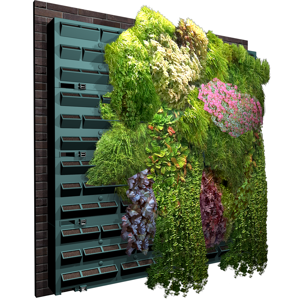objets bim et cao mur vegetal greencity. Black Bedroom Furniture Sets. Home Design Ideas